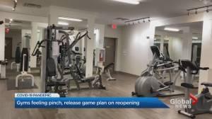 Coronavirus: Toronto-area gyms looking at reopening plans
