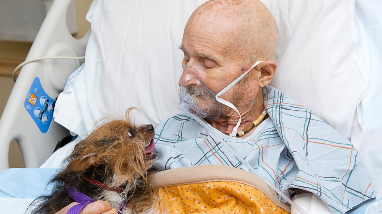 Man in hospice sees dog for one last time