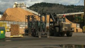 Laid off workers at Kelowna's Tolko mill fear the indefinite closure may turn into a permanent one.