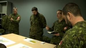 Canadian Forces dispatches members to help provide assistance to Newfoundland residents under snow