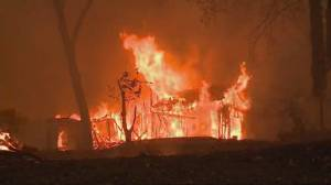 Power shut off in parts of California to prevent wildfires