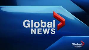 Global News at 5: November 25 Top Stories