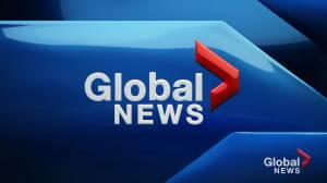 Global News at 5: November 25 Top Stories