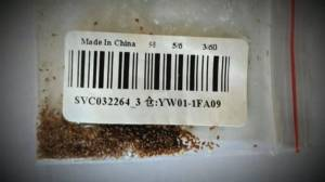 Mysterious packages of seeds from China being mailed around the world