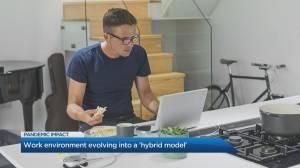 Will Canada adopt a 'hybrid' work environment model? (04:42)