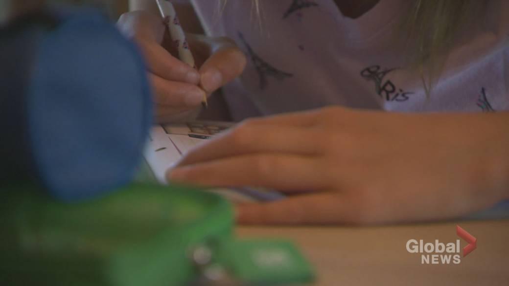 Click to play video 'Quebec government adds three more pedagogical days to school calendar'
