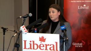 Green MP Jenica Atwin crosses the floor to the Liberal Party (01:46)