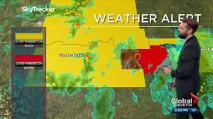 Edmonton weather forecast: Wednesday, June 9, 2021 (03:06)