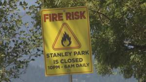 Stanley Park is being closed overnight to mitigate the risk of a wildfire (02:15)