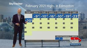 Edmonton afternoon weather forecast: Monday, February 8, 2021 (02:26)