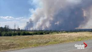 Resident captures smoke billowing from Tremont Creek wildfire in BC (01:48)