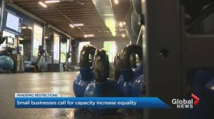 Ontario small businesses call for capacity increase equality (02:31)