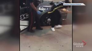 Video appears to show Toronto officer pushing, pepper spraying group