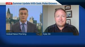 Summer Update with Sask. Pulse Growers (04:17)