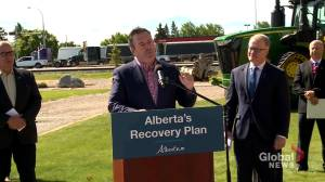 Jason Kenney celebrates Trans Mountain court decision as 'critical victory' (01:32)