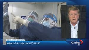 What is the B.C. government doing to prepare for a possible COVID-19 outbreak?