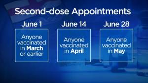 COVID-19 second doses: Alberta releases updated vaccine plan (02:46)