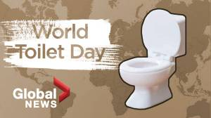 What is World Toilet Day?