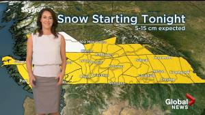 Snow, cold front expected to chill southern B.C. (04:12)