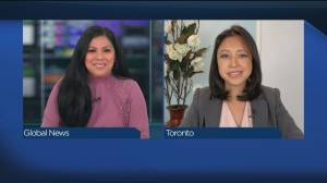 Business Roundup: Sky-high car rental rates and another Porter Airlines delay (04:54)