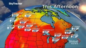 Winnipeg weather outlook: Aug. 4 (01:31)