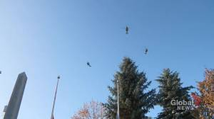 Military flyover at Edmonton's Beverly Cenotaph Remembrance Day (01:18)