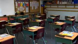 Parents, teachers voice concerns over increase in some TDSB class sizes (03:36)