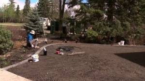 Stay-at-home summers spur Edmonton landscaping boom (01:50)