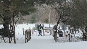 City of Kawartha Lakes man charged after alleged assault at off-leash dog park (01:06)