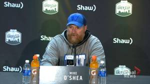 Grey Cup: Winnipeg Blue Bombers coach says players played 'very well' in championship