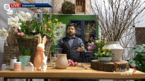 Spring decorating tips (04:31)