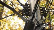 Play video: Halifax residents calling for Nova Scotia Power to address preventative maintenance concerns