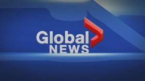 Global News at 5: Nov 11 Top Stories