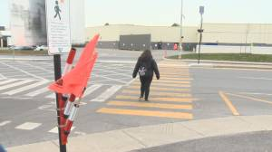 New pedestrian pilot project  in Vaudreuil-Dorion uses flags to caution drivers (02:05)