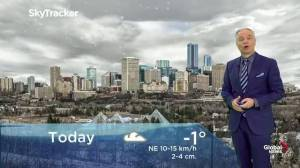 Edmonton early morning weather forecast: Wednesday, December 4, 2019