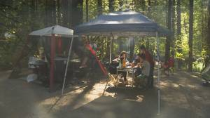 Unhappy campers raise concerns over empty sites