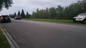 Edmonton police investigate discovery of possible human remains