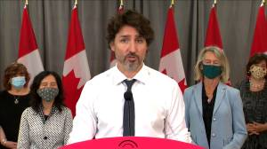 Coronavirus: Federal government to transition those on CERB to Employment Insurance