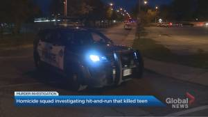 Teenager killed in East York hit-and-run