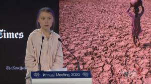 "Greta Thunberg tells World Economic Forum that her generation ""will not give up without a fight"" on climate"