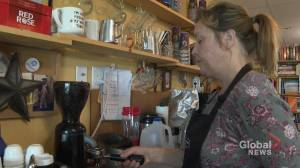 Cats and books a successful combination for one Nova Scotia business