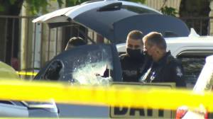 Officials update on fatal Delta shooting of B.C. corrections officer (01:32)