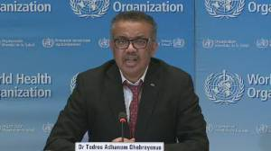 Coronavirus outbreak: WHO director says countries must 'fight, unite and ignite'