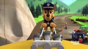 Alberta teen to star in 'PAW Patrol: The Movie' (01:43)