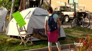 Encampment occupying Mont-Royal green space a call for action on climate crisis (02:07)