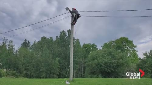 Shining A Light on Power Safety | Watch News Videos Online