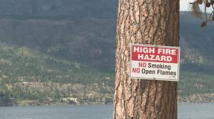 Okanagan wildfire concerns grow with more fire activity