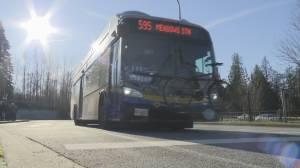 Full bus shutdown for three days next week