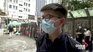 Hong Kong opposition kicks off primary elections