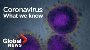 Here's what we know about the new coronavirus